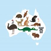 stock photo of cockatoos  - map of Australia - JPG