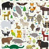 picture of hare  - seamless pattern bison bat manatee fox elk horse wolf partridge fur seal Polar bear Pit viper snake Mountain goat raccoon Eagle skunk parakeet Jaguar hare narwhal elk Grizzly gannet Muskox turtle alligator - JPG