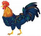 stock photo of roosters  - Abstract cartoon rooster illustration on white background - JPG