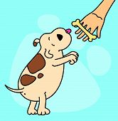 Vector illustration of cartoon dog  with bone on a background