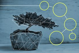 foto of bonsai tree  - Edited photograph of a bonsai tree with a polygonal structure - JPG