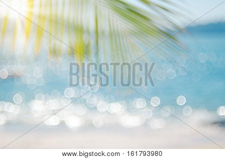 poster of Blur Beautiful Nature Green Palm Leaf On Tropical Beach With Bokeh Sun Light Wave Abstract Backgroun
