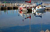 Morning Marina