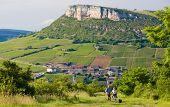 environment of La Roche de Solutre with vineyards, Burgundy, France
