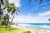 image of greater antilles  - Bathsheba - JPG