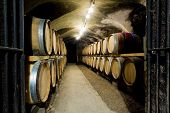 stock photo of wine cellar  - wine cellar in Buxy - JPG