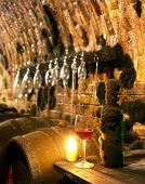 winery, Cejkovice, Czech Republic