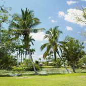 Boca de Guama, Matanzas Province, Cuba
