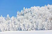 Jeseniky Mountains in winter, Czech Republic