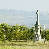 cross with vineyard, Southern Moravia, Czech Republic
