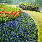 Jardins de Keukenhof, Lisse, Países Baixos