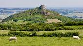 La Roche de Solutre, Burgundy, France