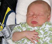 Baby Boy (2 Weeks Old) Asleep On Chair
