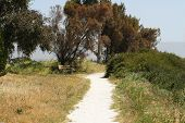 Baylands Path