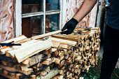 Man Hold Firewood, He Puts Cutting Wood Into Stack Of Wood Woodpile poster