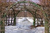 Trellis arches