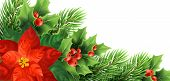 Christmas Poinsettia Flower Realistic Vector Illustration. Xmas Decorative Plants. Holly Twigs, Red  poster