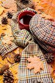 Warming Beverage. Mug Cozy Aromatic Tea Beverage Scarf And Hat. Hot Drink For Autumnal Walk. Mug Of  poster