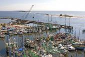 Shrimp Boats And Construction Cranes