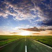 asphalt road  at summer time