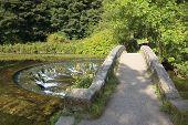 Weir And Packhorse Bridge