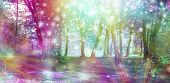 Supernatural Fantasy Woodland Scene - Multicoloured Row Of Trees With Many White Orb Lights, Sparkle poster
