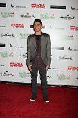 LOS ANGELES - NOV 27:  Adam Irigoyen arrives at the 2011 Hollywood Christmas Parade at Hollywood Bou
