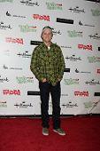 LOS ANGELES - NOV 27:  Jason Dolley arrives at the 2011 Hollywood Christmas Parade at Hollywood Boul