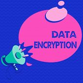 Word Writing Text Data Encryption. Business Concept For Symmetric Key Algorithm For The Encrypting E poster