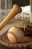 Baseball in a Glove and baseball bat in the dugout