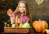 Kid Girl Near Basket Full Of Fresh Vegetables Harvest Rustic Style. Farm Market Fall Harvest. Child  poster