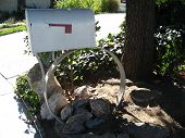 Mailbox On A Circle