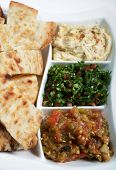 Traditional Arab or Mediterranean mezze with Turkish flat bread. From the front: babaganoush, taboul