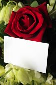 A red rose and orchids with a blank white card for a message