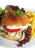 A fish burger - a fillet of fried fish in a bun with lollo rosso lettuce, tomato and a creamy garlic topping, served with a salad and fries.