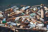 foto of water pollution  - garbage with plastic bottles wood and other pollution on lake water