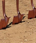 Shovels Waiting