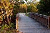 picture of bailey  - Wooden Boardwalk Bridge Ding Darling Sanibel Florida  - JPG