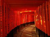 Pavement Under The Torii Gate At Fushimi Inari Shrine