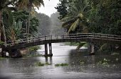 picture of alleppey  - Bridges in alleppey connect little islands in Kerala - JPG