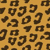 Animal Skin Textures Of Leopard. Vector Illustration Wild Pattern, Eps 10