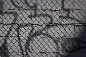 Spray Paint and Chain Link Background