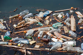 pic of water pollution  - garbage with plastic bottles wood and other pollution on lake water