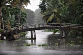 image of alleppey  - Bridges in alleppey connect little islands in Kerala - JPG