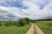 Summer scene with rut road in summer day, Ukraine