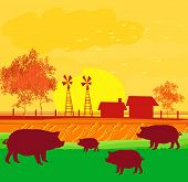 Herd Of Pigs On Nature Background
