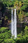 foto of chamarel  - Scenic Chamarel falls in jungle of Mauritius island - JPG