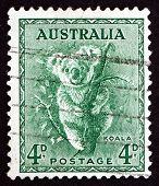 Briefmarke 1942 Australien Koala, Phascolarctos Cinereus