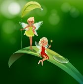 lllustration of the two playful fairies
