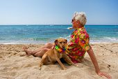 Relaxing elderly man with dog laying at the beach